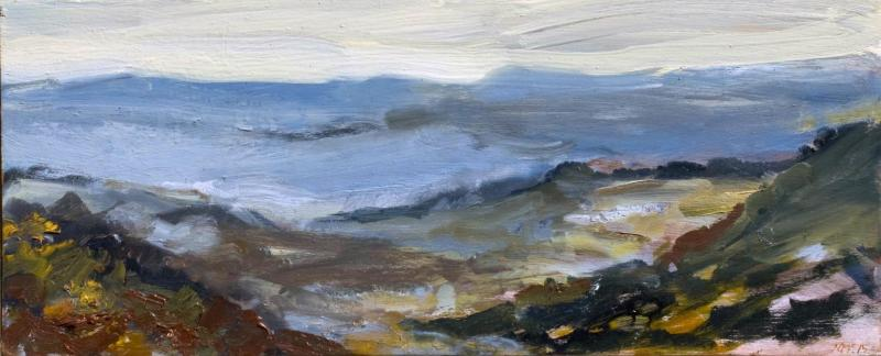 """Hydro Majestic Late Afternoon I"" Jan 2015 Oil on board 17 x 42cm framed"